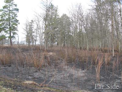 Reservatuion Burned
