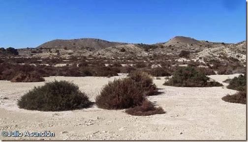Sierra de la Pedrera - Monforte del Cid