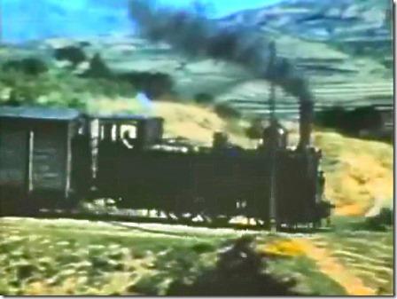 TrainCol (24)