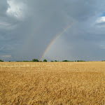 Ruth_Heflin-Double_Rainbow_West_of_Pratt__Kansas.jpg