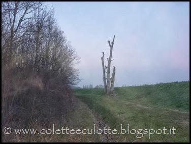 Passeggiata al Dosolo - 1 gennaio 2013 (68)