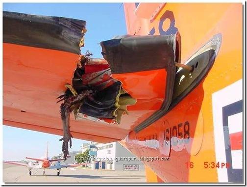 avião acidente (7)