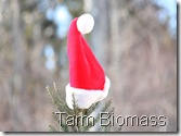 Tarm Biomass Maine Hut and Trails