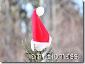 Tarm Biomass Maine Hut and Trails