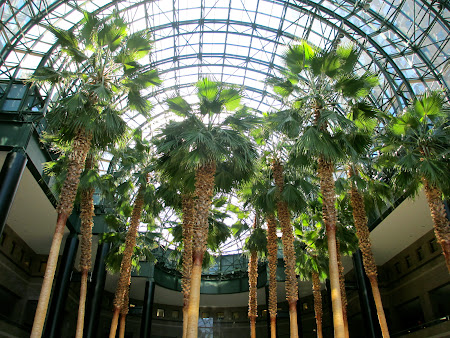 Things to do in New York: Go inside the Winter Gardens Atrium