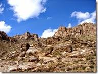 Tucson Sabino Canyon 021