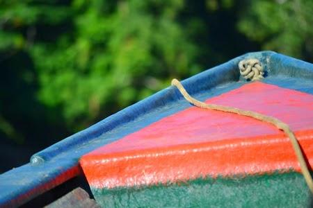 Jungla amazoniana: Barca de amazon
