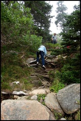 Focus on Acadia ranger talk 069