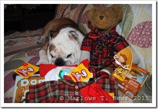 tn_2011-12-26 Marlowe, Princess, and the Christmas Presents (2)