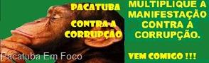 Paca-Corrupção2