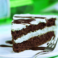 Mint Chocolate Double Layer Cake