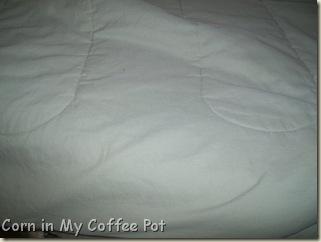 spot remover-comforter 030