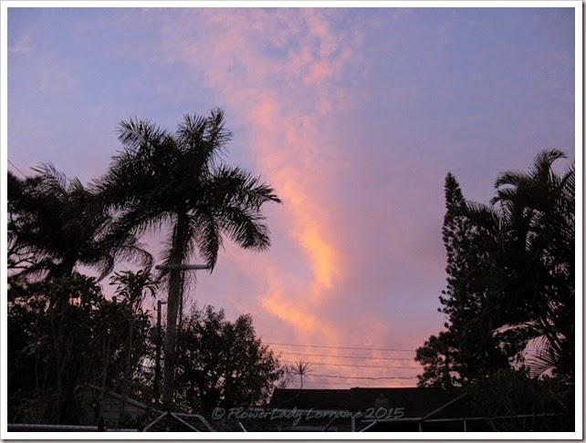 02-26-sunrise