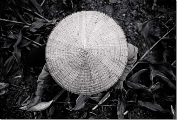Woman Farmer: Hanoi, Vietnam