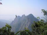 A bird swooping on Gn Bongkok with Parang beyond (Daniel Quinn, June 2011)