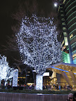 Holiday lights at Roppongi