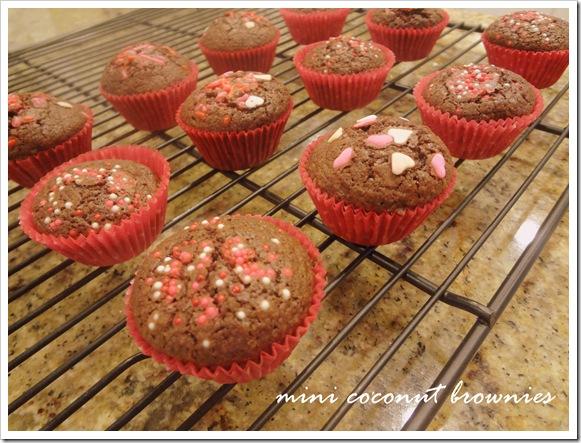 mini brownies 009B
