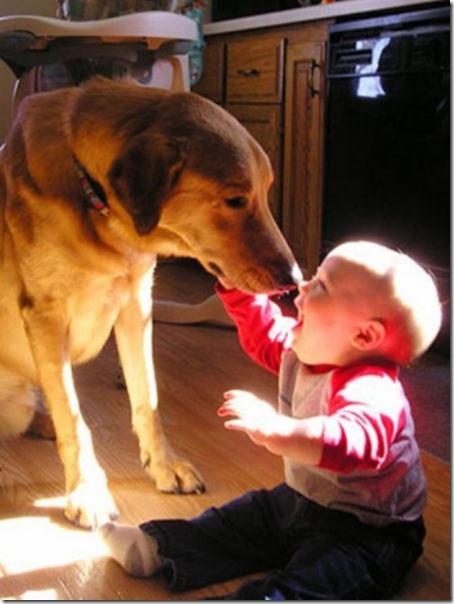 dogs-kids-best-friend-7
