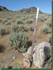 Dooly Knob Trail 142