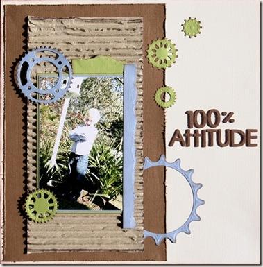 100 attitude