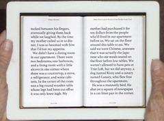 iPad-Reader