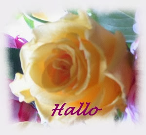 Hallo 5