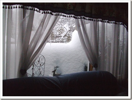 more big snow 2010 011
