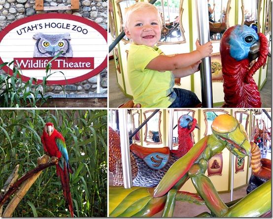 Hoggle Zoo 2