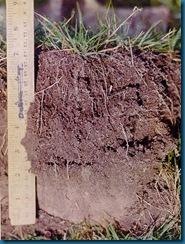 soil-2bg