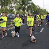 Pet Express Doggie Run 2012 Philippines. Jpg (89).JPG