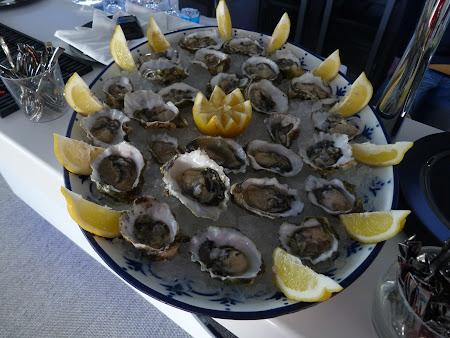 Obiective turistice Algarve: Scoici de bun venit