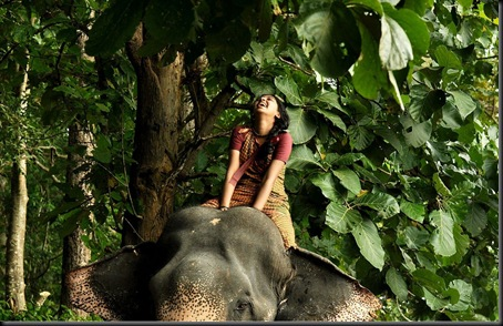 Kumki_Movie_Stills983b5c1ce29a3da0946f3222aad25ec4