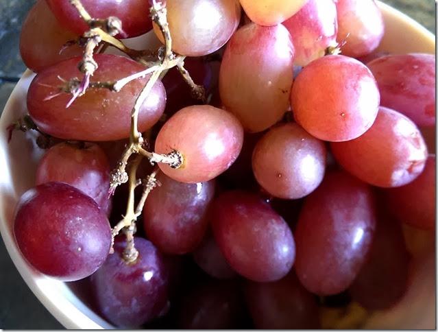 grapes-public-domain-pictures-1 (2225)