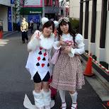 colorful cosplay in Harajuku in Harajuku, Tokyo, Japan