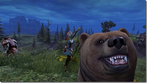 Wars Bären dieser guild wars 2 bär liebt das photobombing spass und spiele