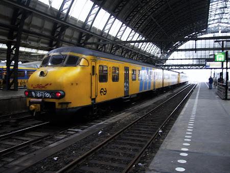 Train: Nederlandse Spoorwagen