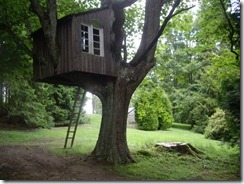 Tree_House_-3
