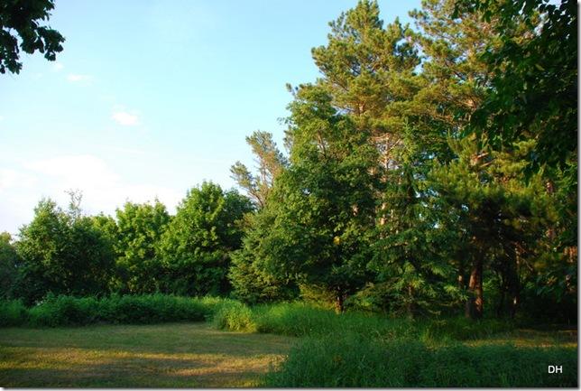 07-15-13 E Woodland Park Grand Marais (20)