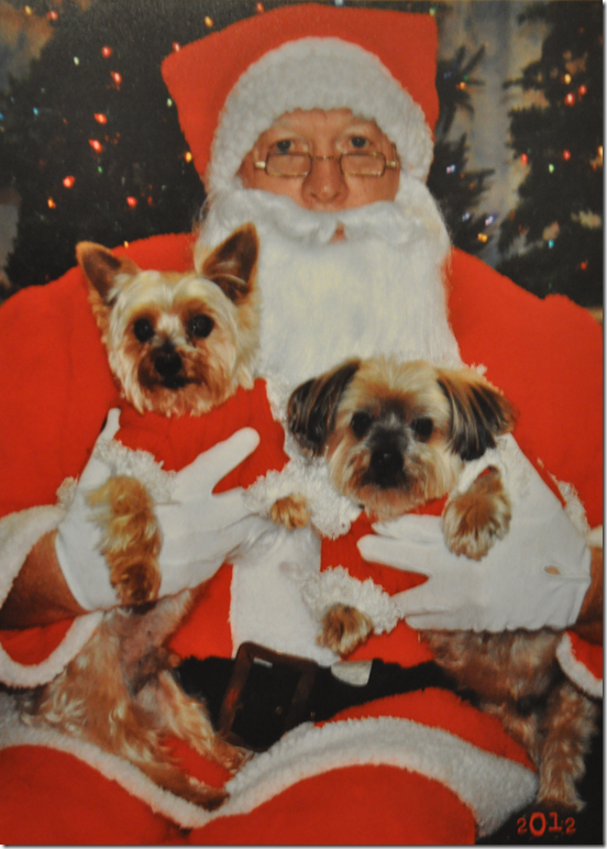 Simon & Teddy with Santa