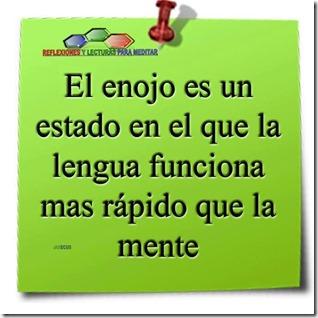 EL ENOJO (1)