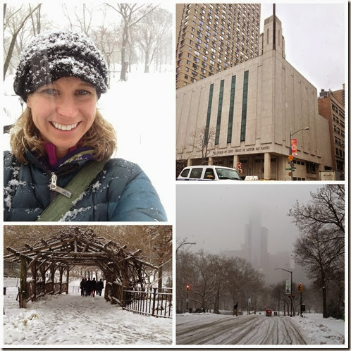 Central Park Collage