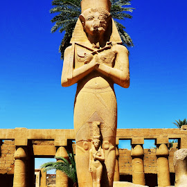 Statues of Ramses by Muhammad Mahmudi - Buildings & Architecture Statues & Monuments ( pharaoh, luxor, karnak temple, ramses, egypt )