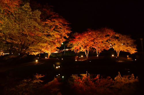 曽木公園の紅葉