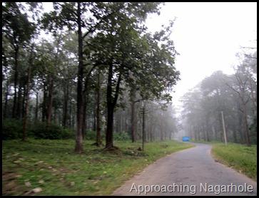 Approaching Nagarhole