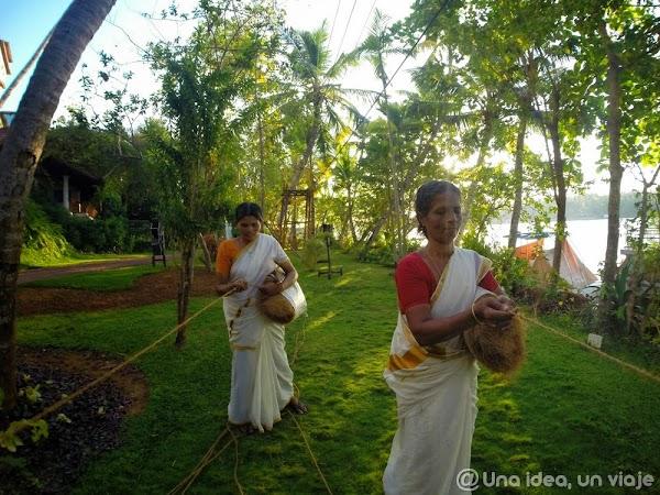 Kerala-backwaters-Kollam-5.jpg