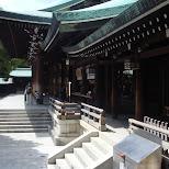meiji jungu in Yoyogi, Tokyo, Japan