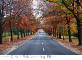 'Autumn at Mt Macedon' photo (c) 2011, Ryk Neethling - license: http://creativecommons.org/licenses/by/2.0/