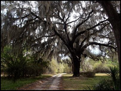 Gainesville to Hawthorn Bike Trail 184