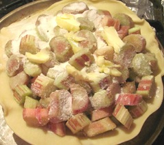 rhubarb pie in bottom shell unbaked