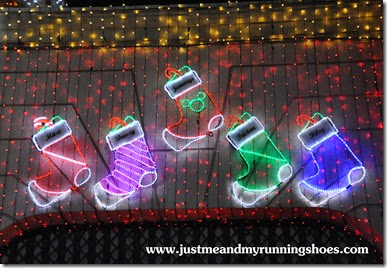 Osborne Family Spectacle of Dancing Lights (7)